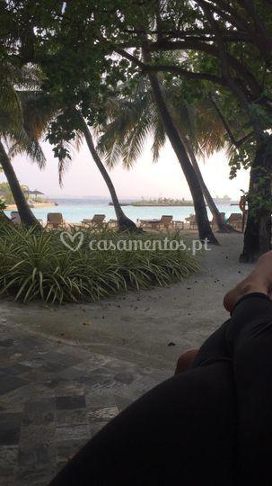 Maldivas - Kurumba 5*