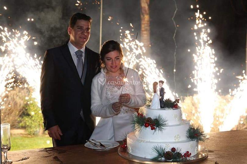 Festa e bolo