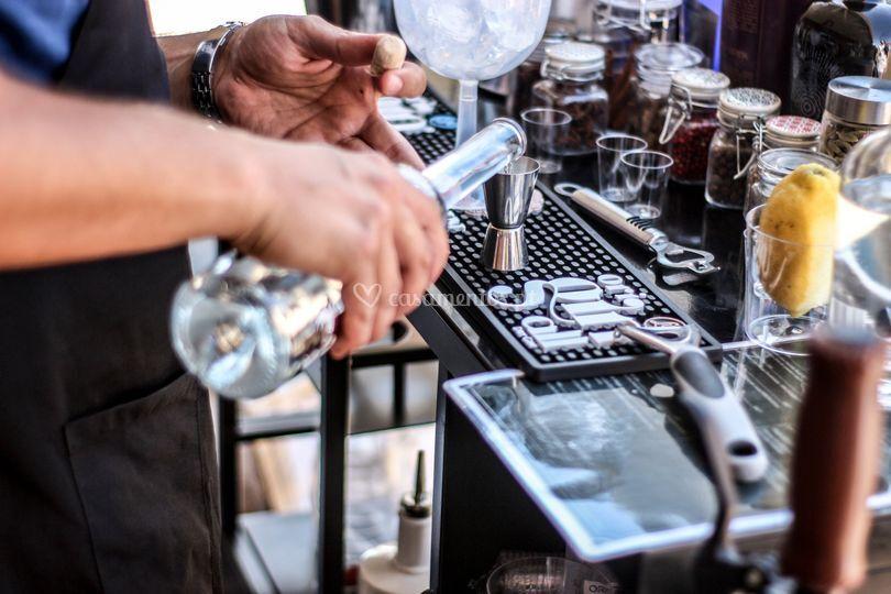 A Servir a dose de gin