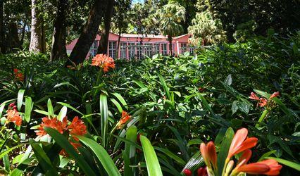Estufa Fria do Jardim Botânico José do Canto