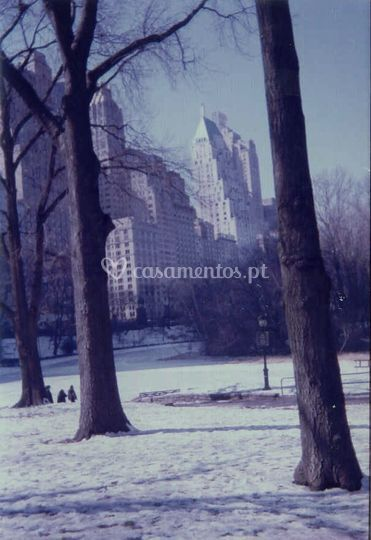 Central-ParK NYC