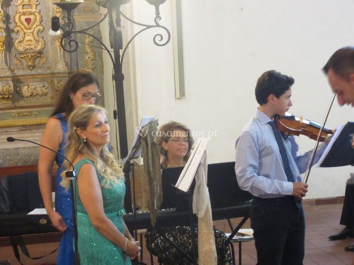 Musicorum e violinista francis
