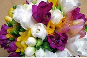 Flores Indoor