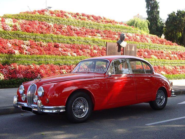 Jaguar MK - II