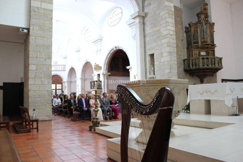 Canto, piano e Harpa