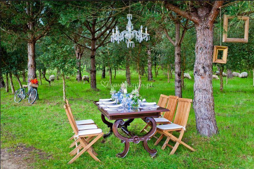 Casamentos no bosque