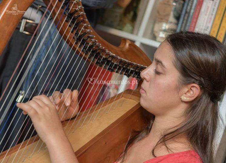Uma melodia delicada