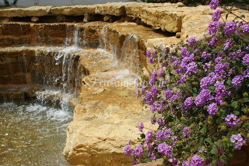 Cascata e flores