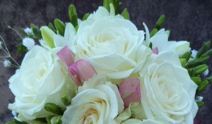 Florista Belas Flores 1