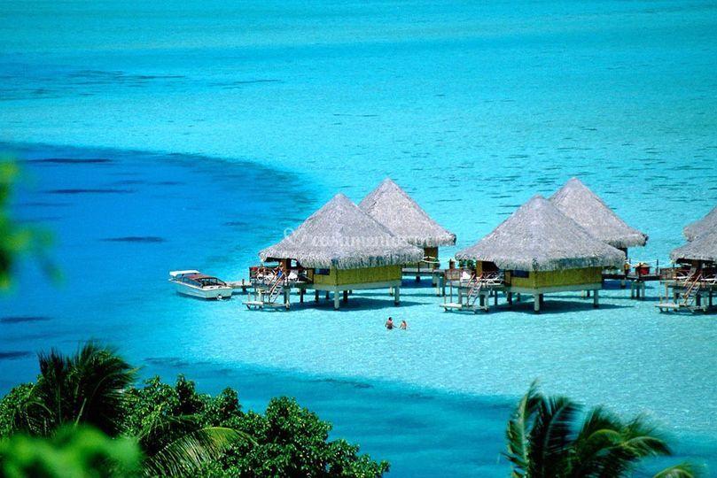 Paradisíaco