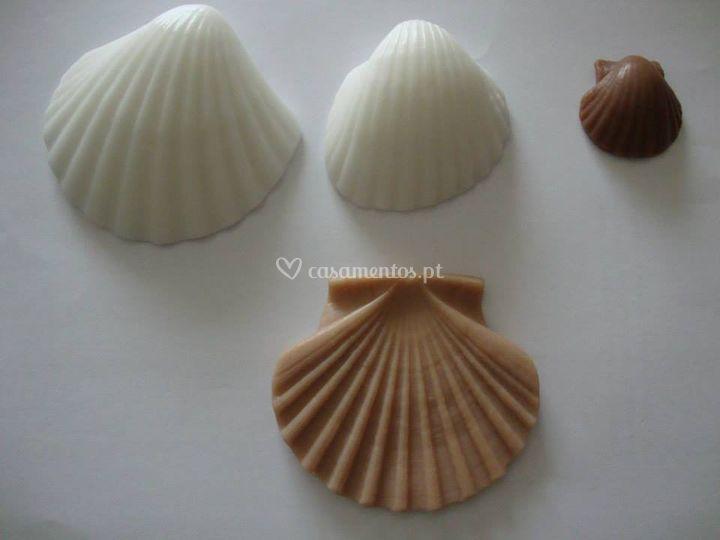 Conchas - Tema Mar
