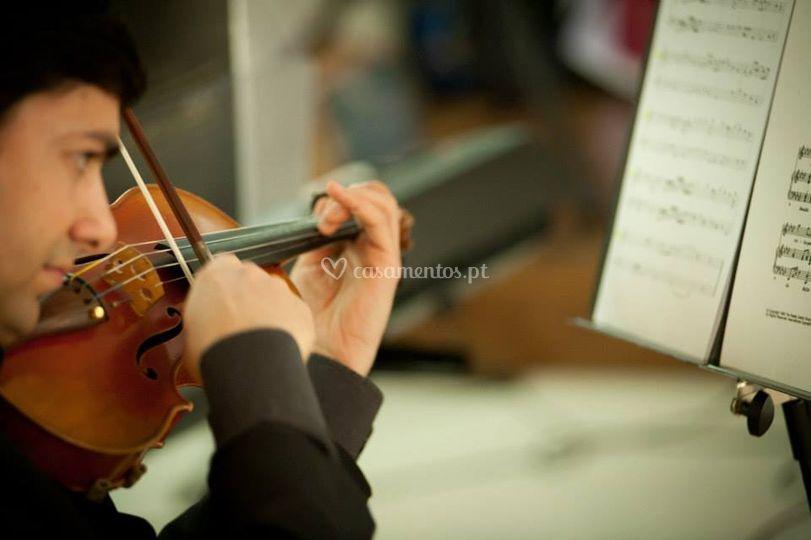 Cerimónia - Violino