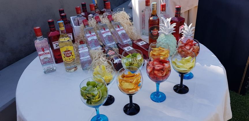 Mesa de gin2