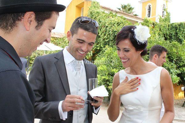 Animação em casamentos