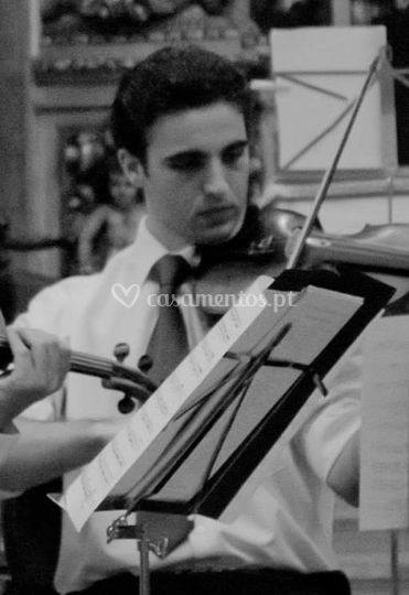 Músico profissional