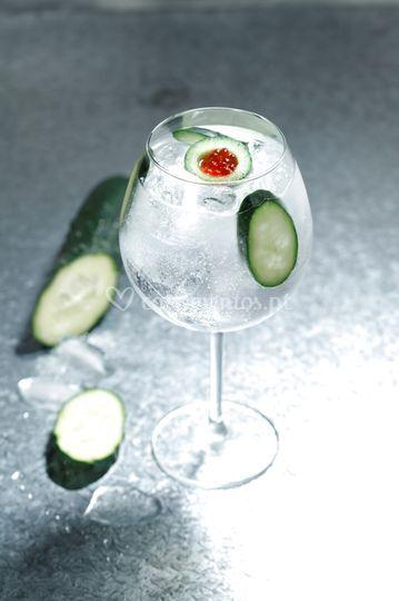 Gin & tónic