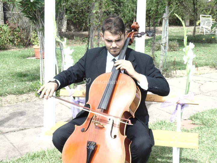 João Brito | cello