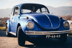 Carocha Blue Drive