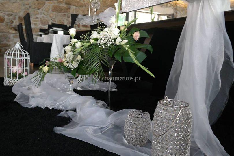 Miminhos Portugal