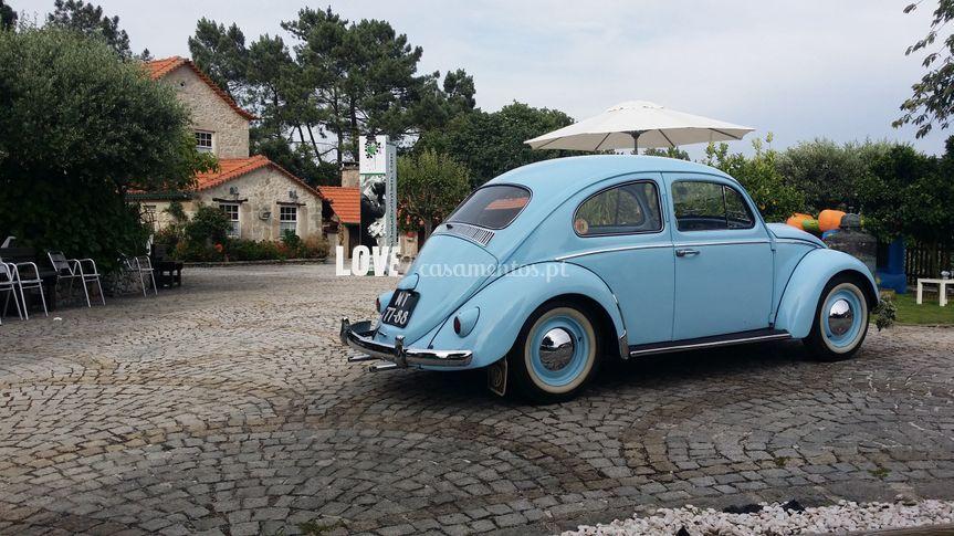 Beetle Travel