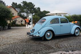 Beetle Travel