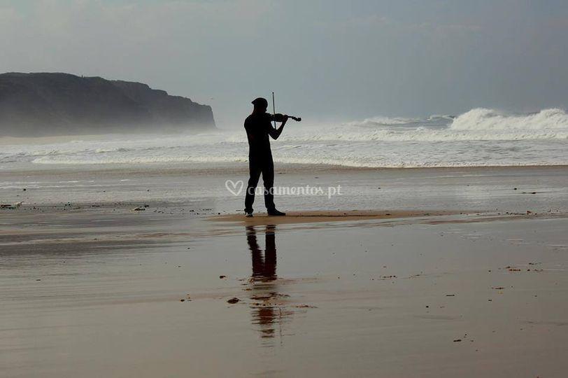 Musica - Violino