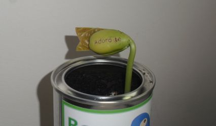Bean4You 1