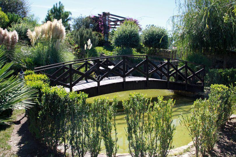 Ponte / lago