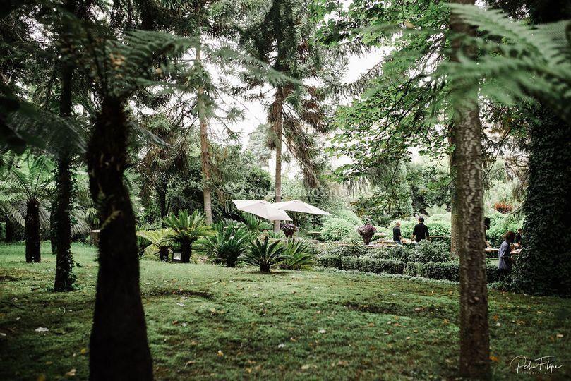 Jardim zona do cocktail