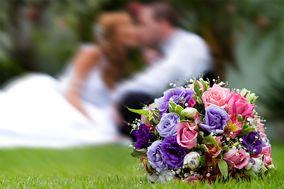 Happy Day - Wedding Film Stories