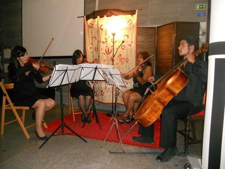 Quarteto de Cordas