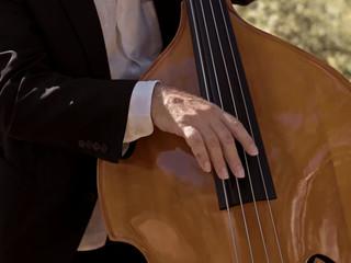 Ricardo J. Martins - Danças na Eira