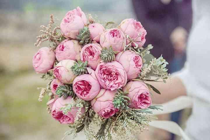 Flor e Decor