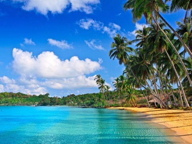 Lua de mel nas Caraíbas: romance num paraíso