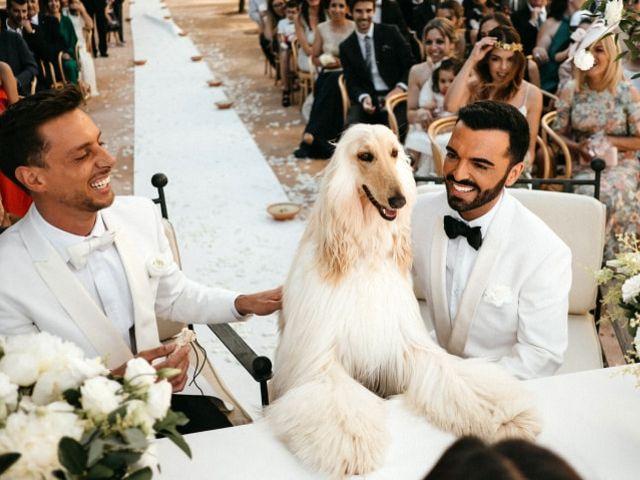 Explosão de Ternura: as melhores fotos dos noivos com os seus animais
