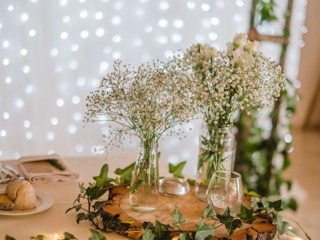 Paniculata: a flor preferida dos casais modernos