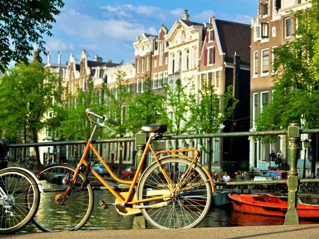 Lua de mel na Holanda, o país das túlipas
