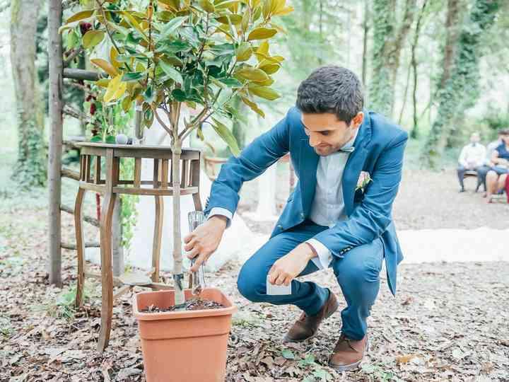 Cerimónia da árvore: o ritual que une os noivos à natureza