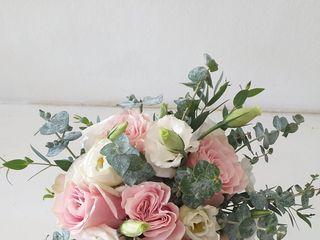 Flores da Quinta 4