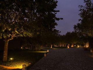Quinta das Camélias 1