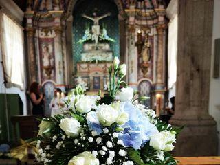 Florista Roseira Brava 1