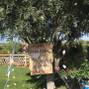 Quinta dos Netos 1