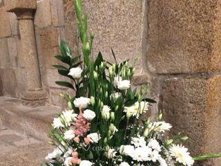 Oporto Flowers 2