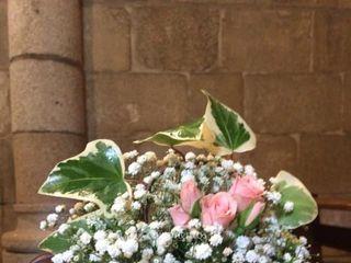 Oporto Flowers 4