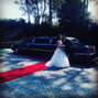 O casamento de Daniel Pereira e Limoprince 8