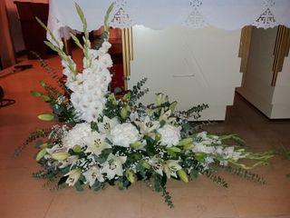 Florista Tininha 4