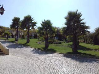 Quinta do Palhas 7