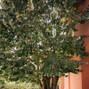 Quinta de São Gonçalo 17