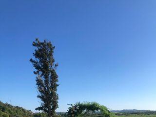 Quinta do Monte Redondo 4