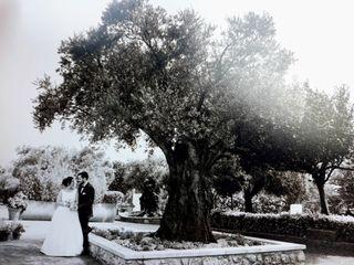 Quinta da Alegria 5